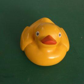 BMX duck prop