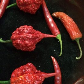 Fabricated Fake Chili Peppers