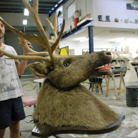 Fabricated talking moose head